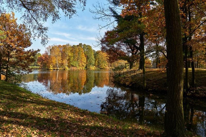 Sunny autumn landscape - a park in golden colors, a waterway leading to a pond with a picturesque island, yellowed leaves dominat. Autumn park bathed in sunlight royalty free stock image
