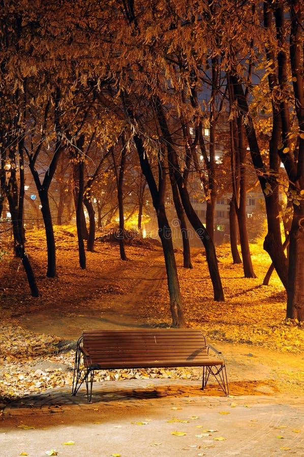 Free Autumn Park Bench. Night Shoot Stock Photography - 7076572