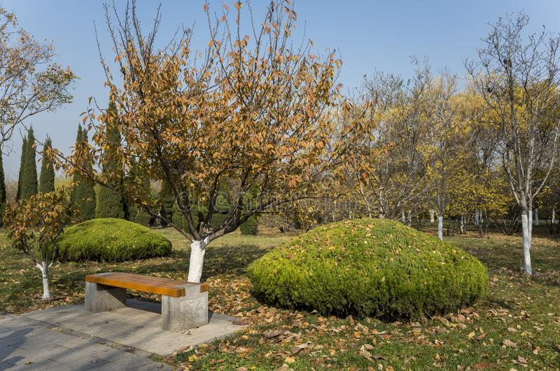 Autumn in the park. Autumn in the Botanical Garden of Zibo city, Shandong province, China stock photography