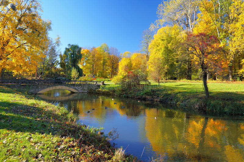 Autumn park with colorful trees stock photo