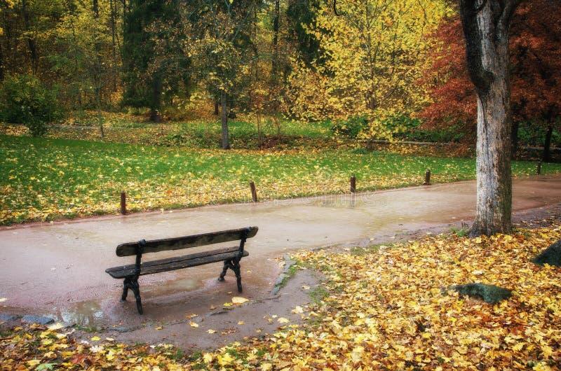 Autumn park. Autumn Uman park.Composition of nature stock images