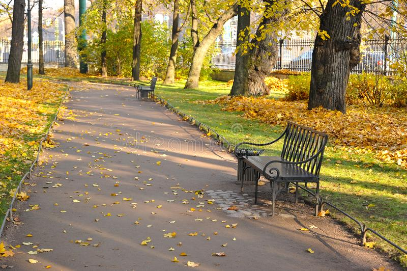 Autumn Park con hojas caidas y un banco imágenes de archivo libres de regalías