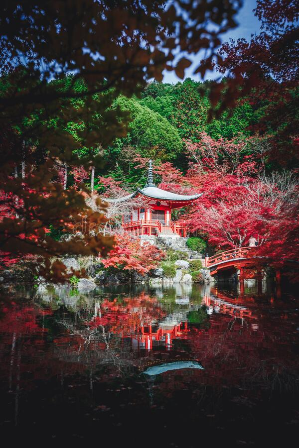 Autumn park. In Daigoji Temple, Kyoto Japan royalty free stock photos