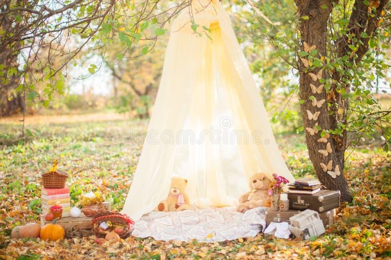 Autumn Park , garden royalty free stock image