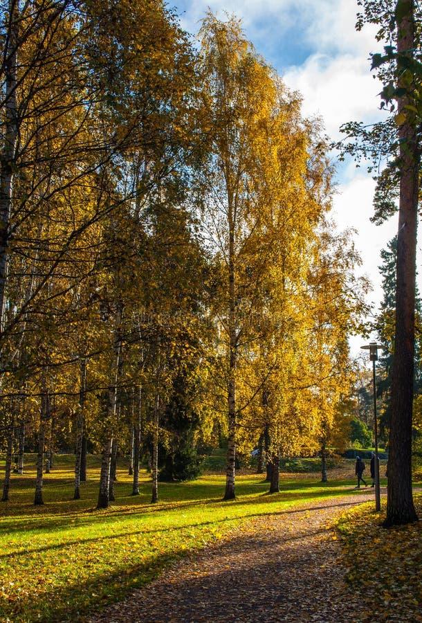 Autumn park in Helsinki stock image