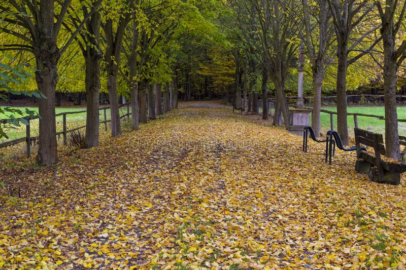 Autumn in the park. Hessenpark , Hesse, Germany stock photography