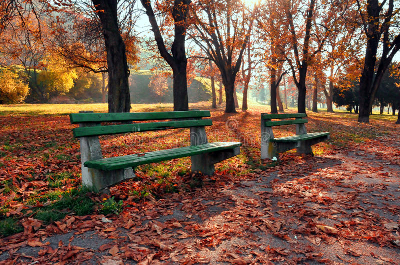 Autumn in the park. Kalemegdan park in autumn with wooden benches,colorful trees and leaves stock images