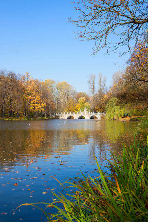 Autumn park Lazienki, Warsaw. Autumn park with trees over blue pond waters, Lazienki, Warsaw, Poland stock image
