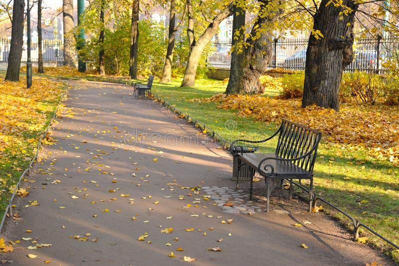 Autumn Park med stupade sidor och en bänk royaltyfria bilder
