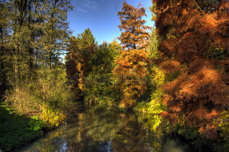 Download Autumn In The Park, Monza, Italy Stock Photo - Image: 11696392
