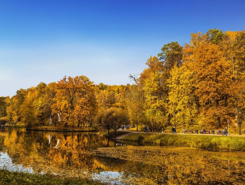 Autumn Park nella Museo-riserva di Tsaritsyno, Mosca fotografia stock libera da diritti