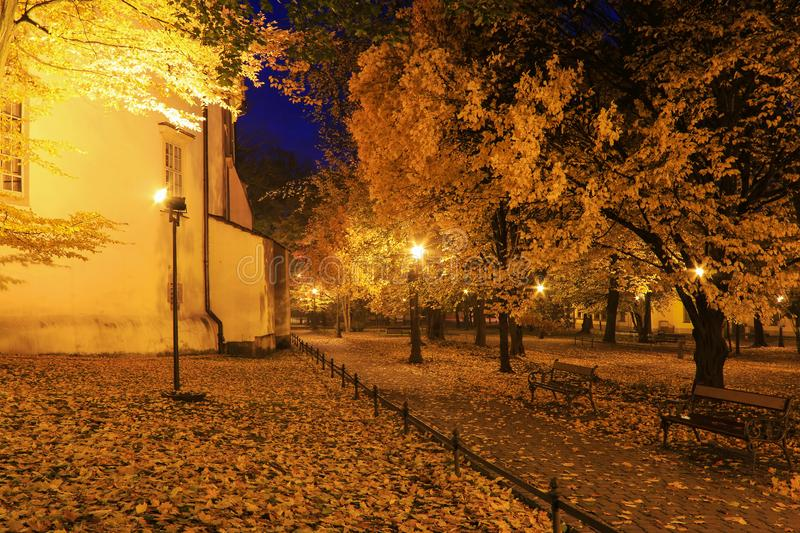 Autumn park by night. Romantic landscape royalty free stock photography