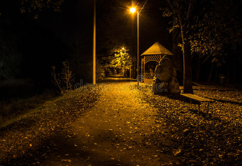 Autumn park at night. Glowing lights. Road with autumn leaves. Background stock images