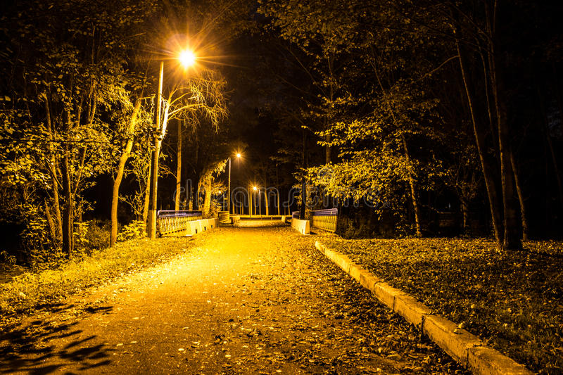 Autumn park at night. Glowing lights. Road with autumn leaves. Background royalty free stock image