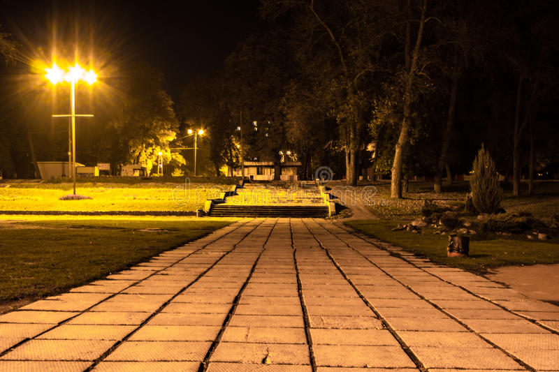 Autumn park at night. Glowing lights. Road with autumn leaves. Background stock photo