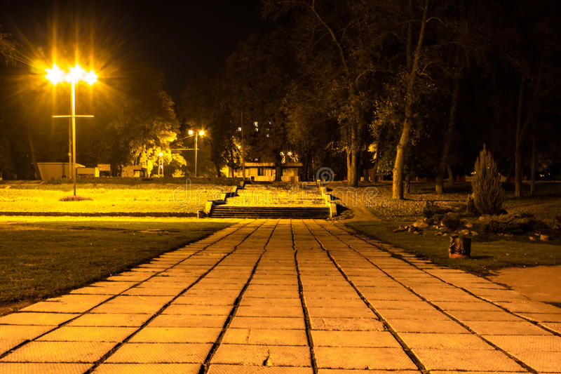 Autumn park at night. Glowing lights. Road with autumn leaves. Background stock photography