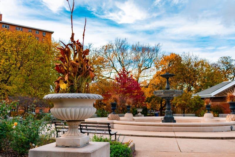 Autumn Park Scene in Rieten Park Chicago met een Fontein royalty-vrije stock fotografie
