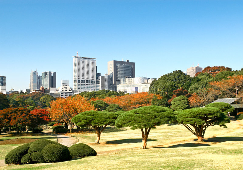 Autumn park in Tokyo stock photography