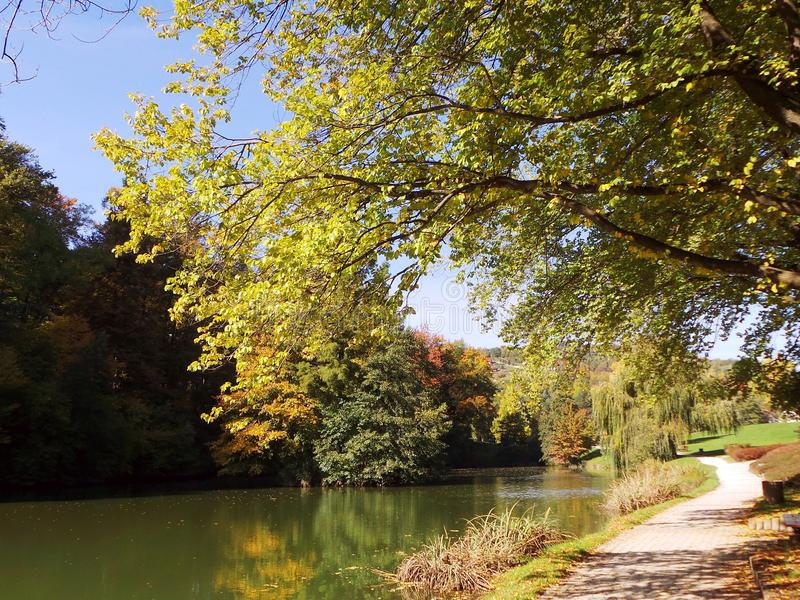 Autumn park with trail among the lake stock photos