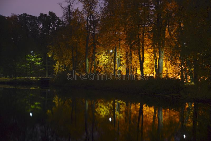Autumn parks with yellow trees illuminated by lanterns are reflected in the smooth surface of the lake stock photography