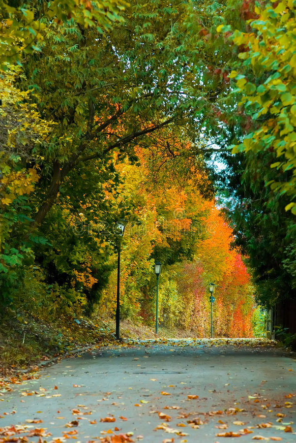 Free Autumn Passage Stock Photos - 6725263
