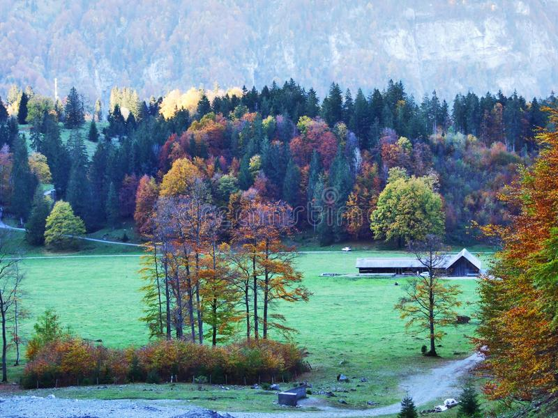 Autumn pastures and farms in the valley of lake Klontalersee or in the Klontal valley. Canton of Glarus, Switzerland royalty free stock photography