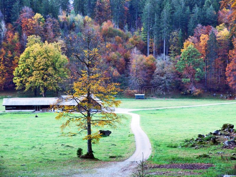 Autumn pastures and farms in the valley of lake Klontalersee or in the Klontal valley. Canton of Glarus, Switzerland royalty free stock images