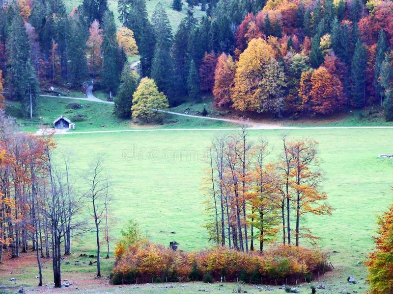 Autumn pastures and farms in the valley of lake Klontalersee or in the Klontal valley. Canton of Glarus, Switzerland stock photo