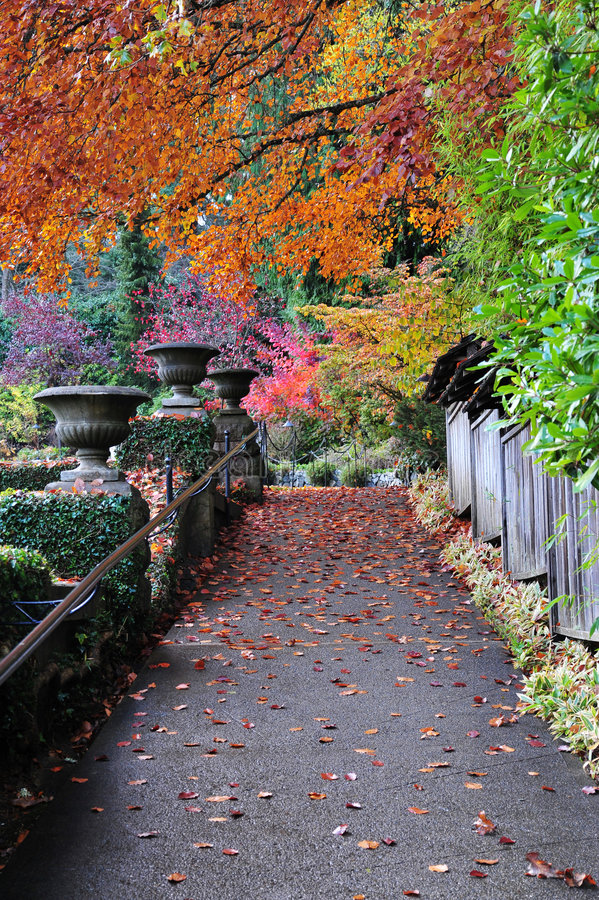 Download Autumn Path In Butchart Gardens Stock Photo - Image: 7262278