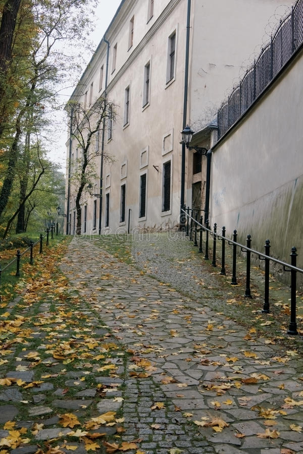 Download Autumn path in Krakow stock photo. Image of autumn, view - 28797320