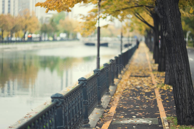 Download Autumn path by urban river stock photo. Image of waterway - 16534412