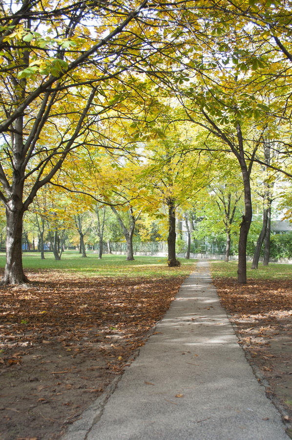Autumn Pathway foto de stock