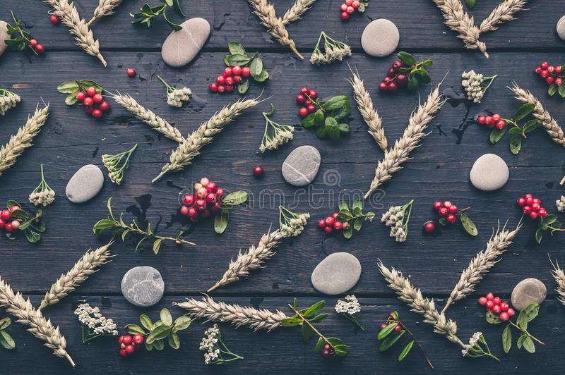 Autumn pattern with ears of wheat, lingonberries, yarrow flowers and round pebbles on a dark rustic background royalty free stock images