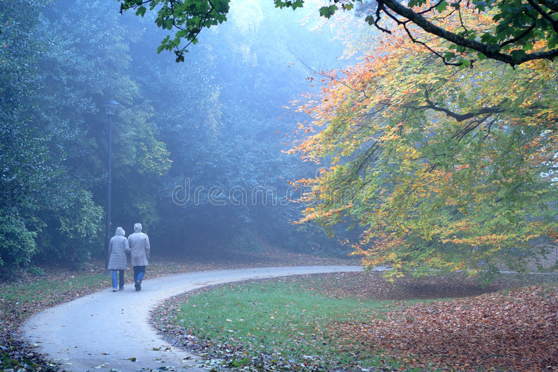 Autumn people. Couple walking together through autumn colours in the park stock photo