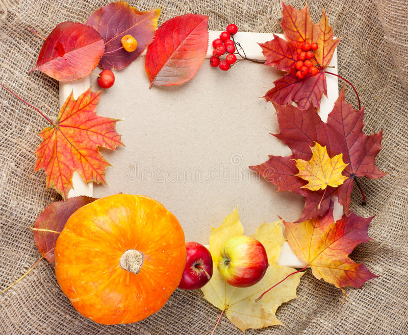 Download Autumn photo frame stock image. Image of border, design - 26755045