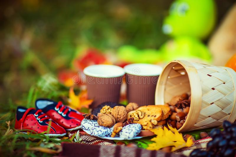 Autumn picnic outdoors. Hot Cups of Tea. autumn concept. Yellow Leaves with Nuts.  royalty free stock photos