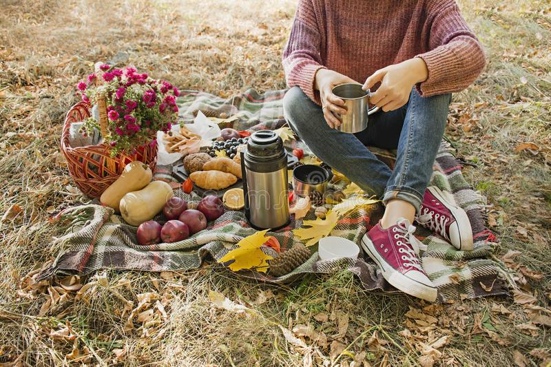 Autumn picnic in the park. The girl holds a cup of tea in her hands. Basket with flowers on a blanket in yellow autumn leaves. Autumn picnic in the park, warm royalty free stock photo