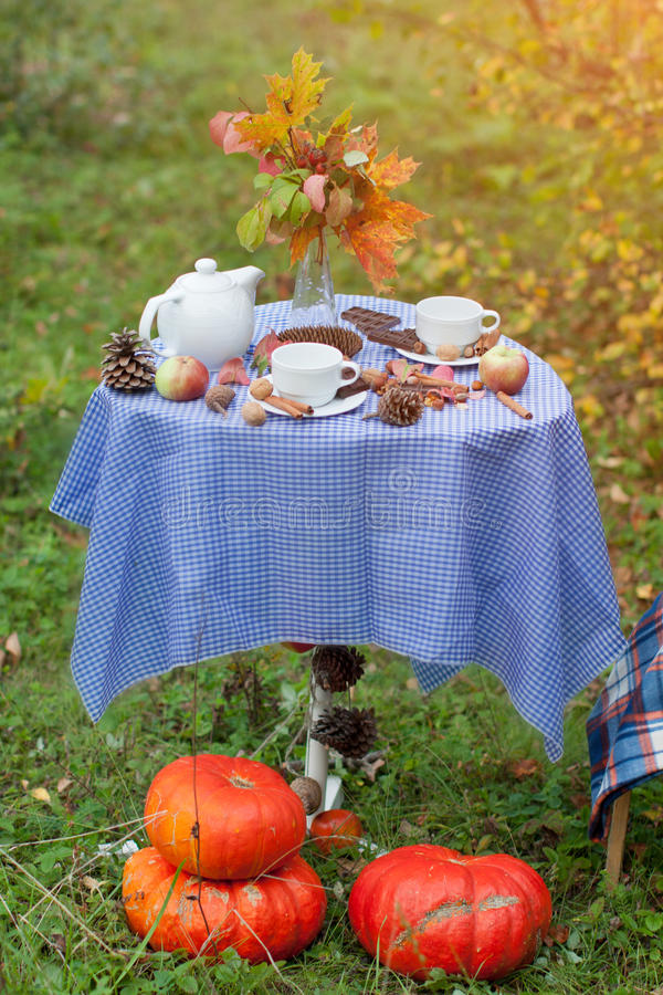 Autumn picnic in a park royalty free stock photo