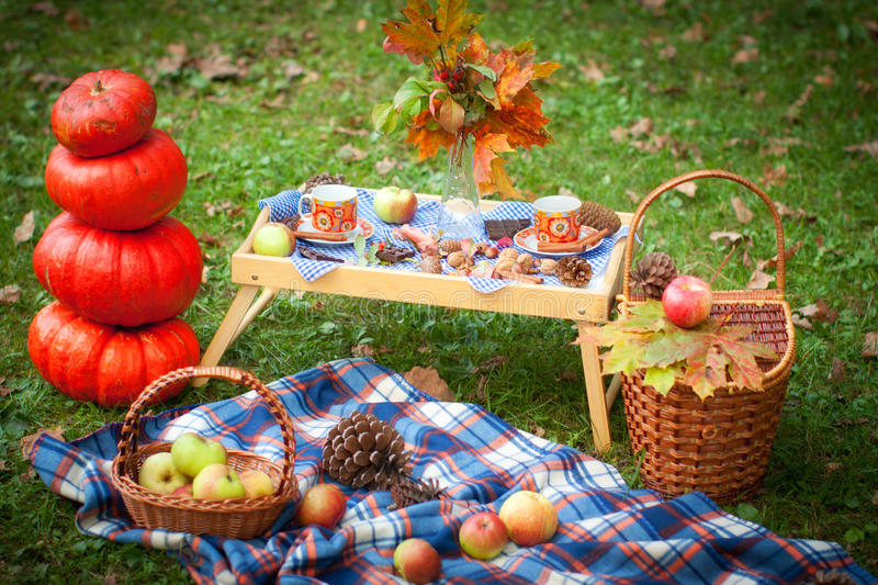 Autumn picnic in a park stock photo
