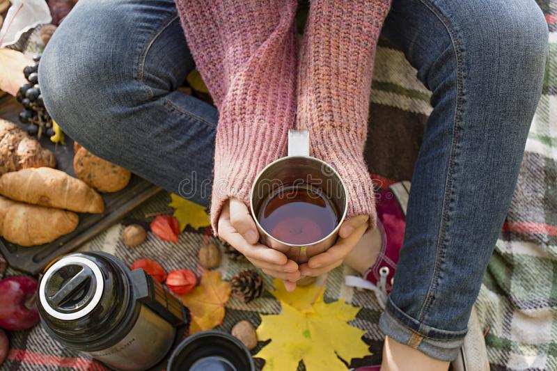 Autumn picnic in the park, warm autumn day. The girl holds a cup with tea in her hands. Basket with flowers on a blanket in yellow. Autumn leaves. Autumn royalty free stock photos