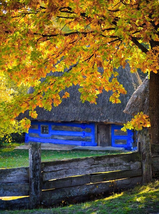 Autumn in Pirogovo royalty free stock image