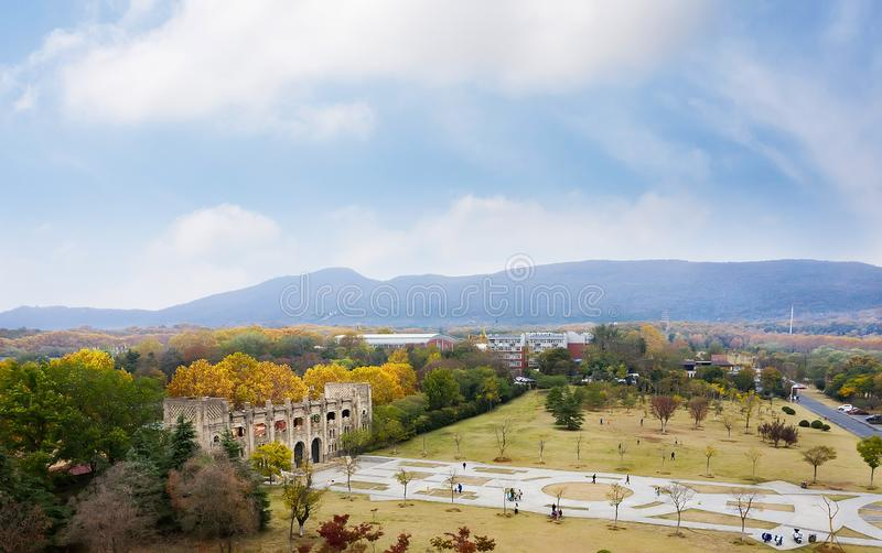 Nanjing Sports Park. In autumn, the plants in Zijinshan, Nanjing, are colourful and attract a large number of tourists to visit. This is Nanjing Sports Park royalty free stock images