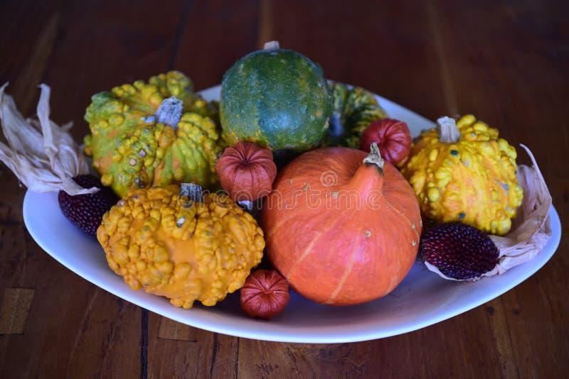 Autumn Platter fotos de stock royalty free