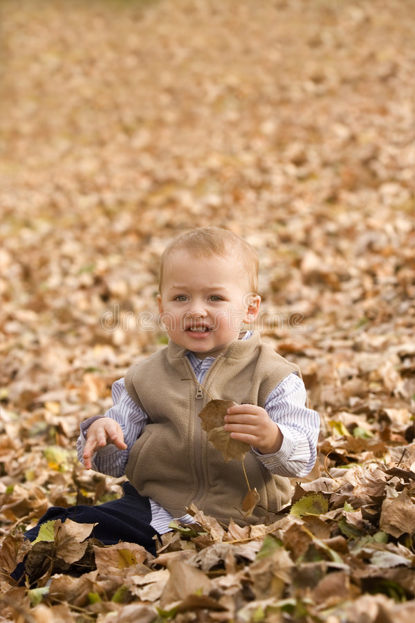 Autumn play royalty free stock photo