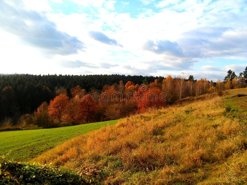 Autumn in poland royalty free stock images