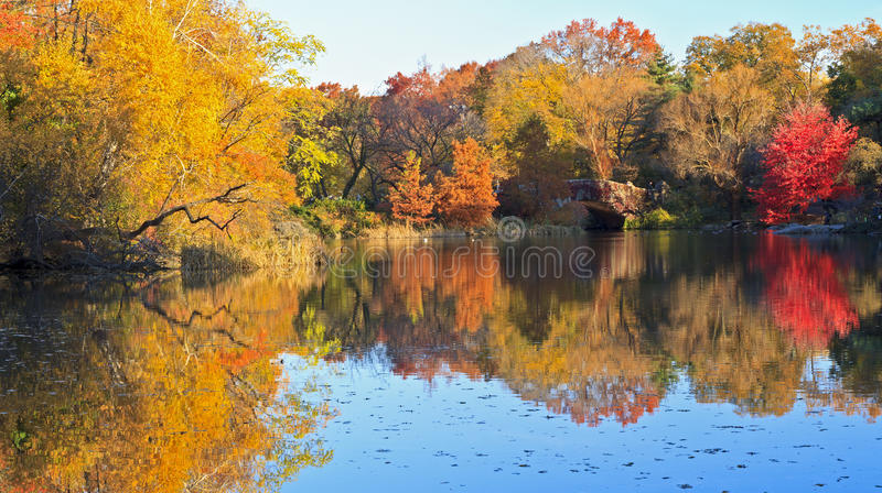 Download Autumn On The Pond In Central Park Stock Image - Image: 22308337