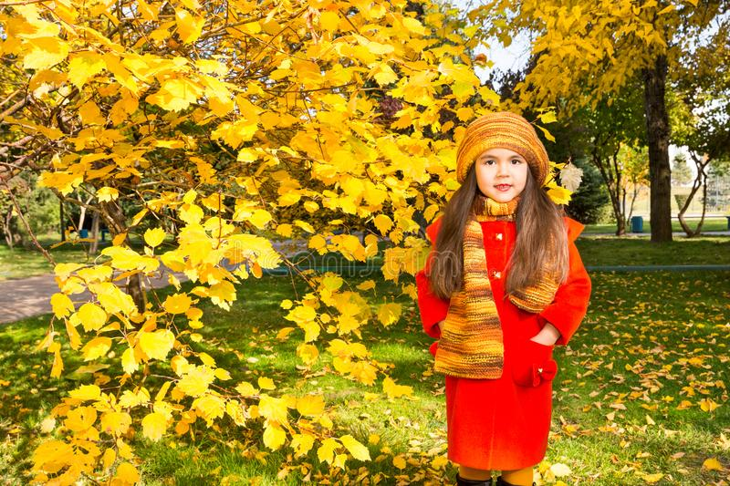 Autumn portrait of beautiful kazakh, asian child. Happy little girl with leaves in the park in fall. royalty free stock photos