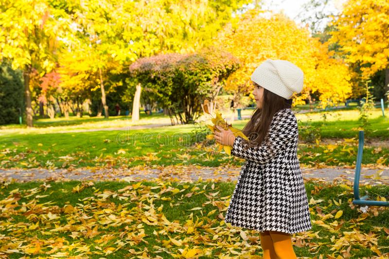 Autumn portrait of beautiful kazakh, asian child. Happy little girl with leaves in the park in fall. royalty free stock photo