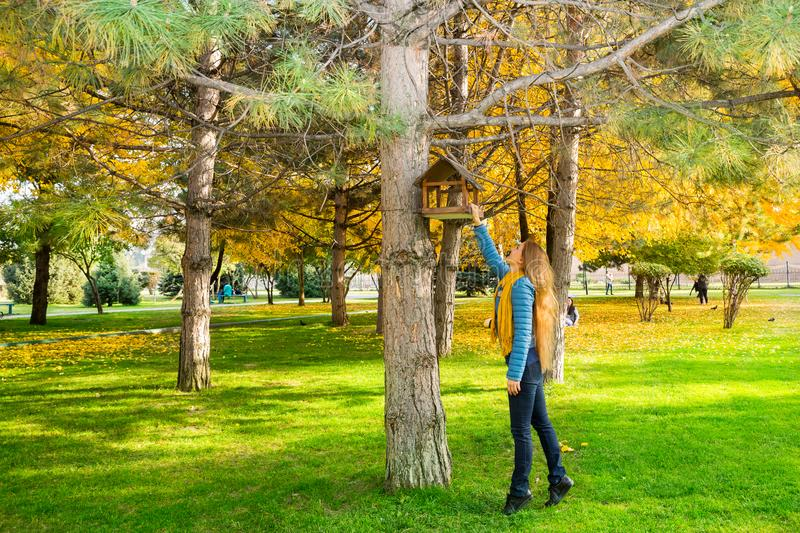 Autumn portrait of beautiful woman over yellow leaves while walking in the park in fall. Positive emotions and happiness concept. stock photography