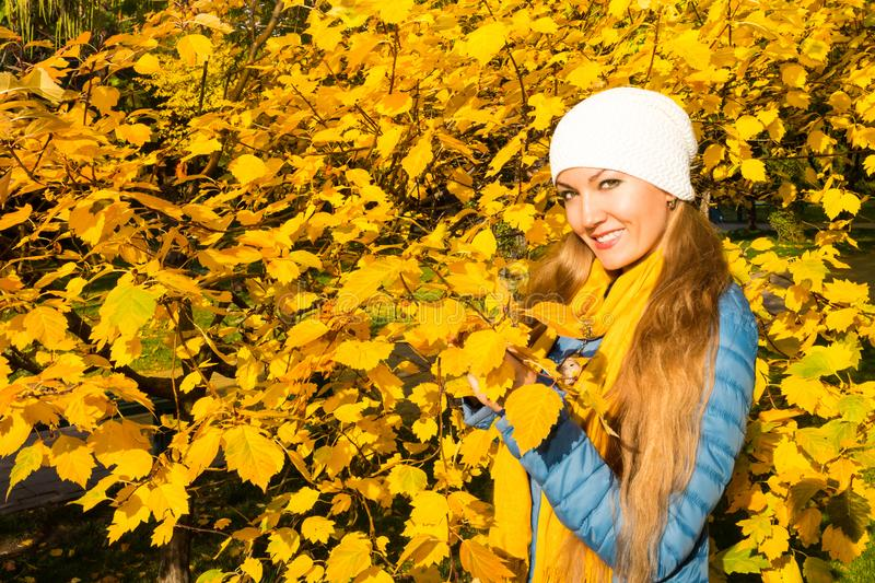 Autumn portrait of beautiful woman over yellow leaves while walking in the park in fall. Positive emotions and happiness concept. royalty free stock photos